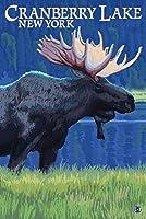 クランベリー湖、ニューヨーク–Moose at Night 36 x 54 Giclee Print LANT-42340-36x54