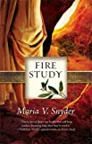 Fire Study (A Soulfinders Novel)