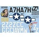1/32 米陸軍 P-47 サンダーボルト「Fran」「Tipsy」
