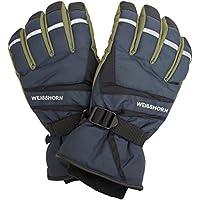 スキーグローブ メンズ WEISSHORN(ワイスホルン) 男性用 防水 スキー手袋 W2530-03