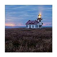 商標FineアートポイントCabrillo Light Station by Lance Kuehne 24x24 ALI31073-C2424GG