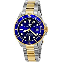 Henry Jay Mens 23K Gold Plated Two Tone Stainless Steel Specialty Aquamaster Professional Dive Watch with Date (Amazing Christmas Gift)