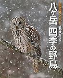 八ヶ岳 四季の野鳥―吉野俊幸写真集 (BIRDER SPECIAL) 画像