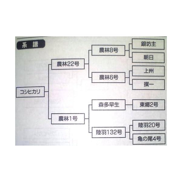 【精米】三重県 白米 コシヒカリの紹介画像3