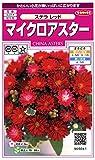 サカタのタネ 実咲花5041 マイクロアスター ステラ レッド 00905041