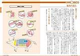 ゼロから理解する 食肉の基本: 家畜の飼育・病気と安全・流通ビジネス (すぐわかるすごくわかる!) 画像