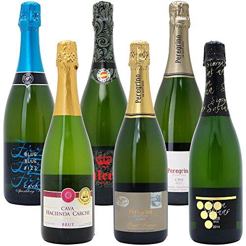 本格シャンパン製法だけの厳選泡6本セット((W0GX83SE))(750mlx6本ワインセット)