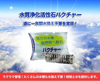 バクチャー20 水質調整剤・水質浄化剤 淡水用 20L