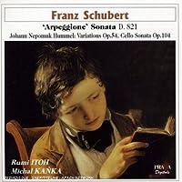 Schubert: Arpeggione Son D 821