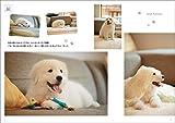 大きな犬と暮らす Vol.2 (愛犬の友 Premium) 画像