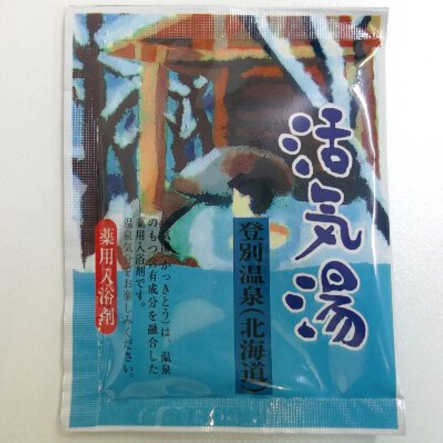 チョコレートフロー伝える活気湯 登別温泉(ミント)