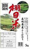 長崎県産  白米 コシヒカリ 10kg 平成29年産 (5kg×2袋) 【棚田米】