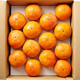 奈良県産 延命柿 富有柿 約2.5kg L~2Lサイズ 詰め合わせ 箱入り