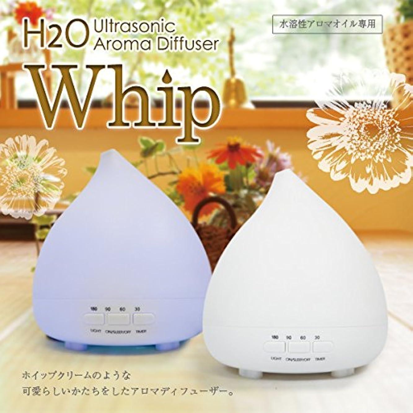 ピクニック幹規範アロマディフューザーH2O Whip