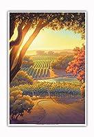 黄昏時のヴィンヤード - ワインカントリーアート によって作成された カーン・エリクソン - アートポスター - 33cm x 48cm