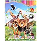 JAGENIE Creative Animal Kingdom Coloring Book Painting Graffiti For Children Education