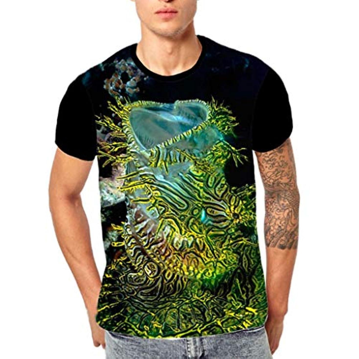 ねばねば共役うめきWyntroy シャツ メンズ 半袖 丸首 Tシャツ カラフル 魚 3Dプリント ゆったり カットソー ロングスリーブ スポーツ人気 快適 薄い おしゃれ ストリート カジュアル スウェット ファッション春夏秋 M~3XL