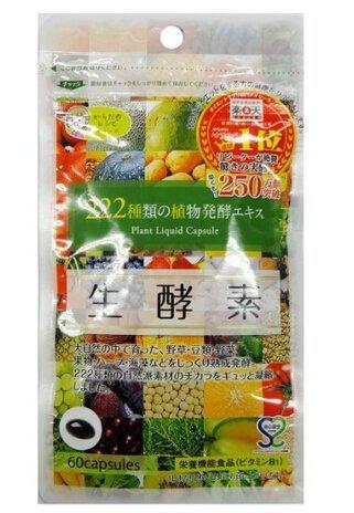 生酵素 60粒  酵素 カプセル 222種類の植物発酵エキス  サプリ 健康食品