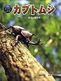 カブトムシ―昆虫と雑木林 (科学のアルバム・かがやくいのち 1)