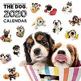 カレンダー 2020 壁掛け THE DOG 犬 オールスター 403334 2019年9月-2020年12月 アーリスト イヌ いぬ All-Stat