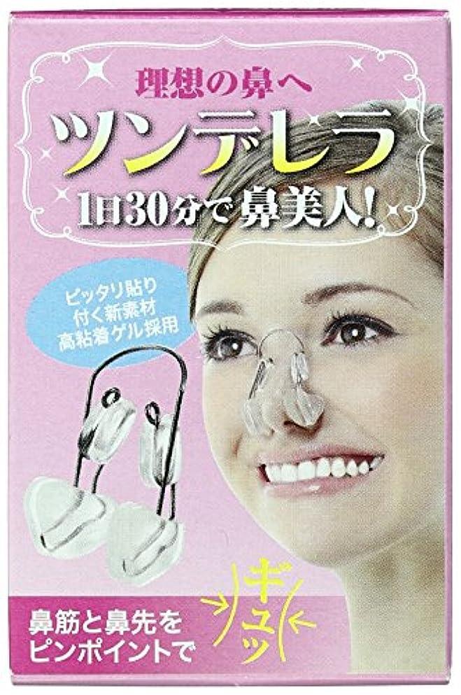 肉の意味のある剥離理想の鼻へツンデレラ