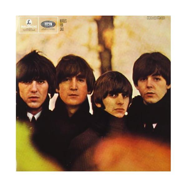 The Beatles In Monoの紹介画像11