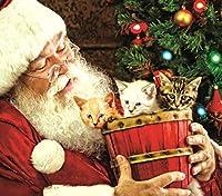 SunsOut ジグソーパズル 300ピース バレル・オブ・ファン クリスマスパズル
