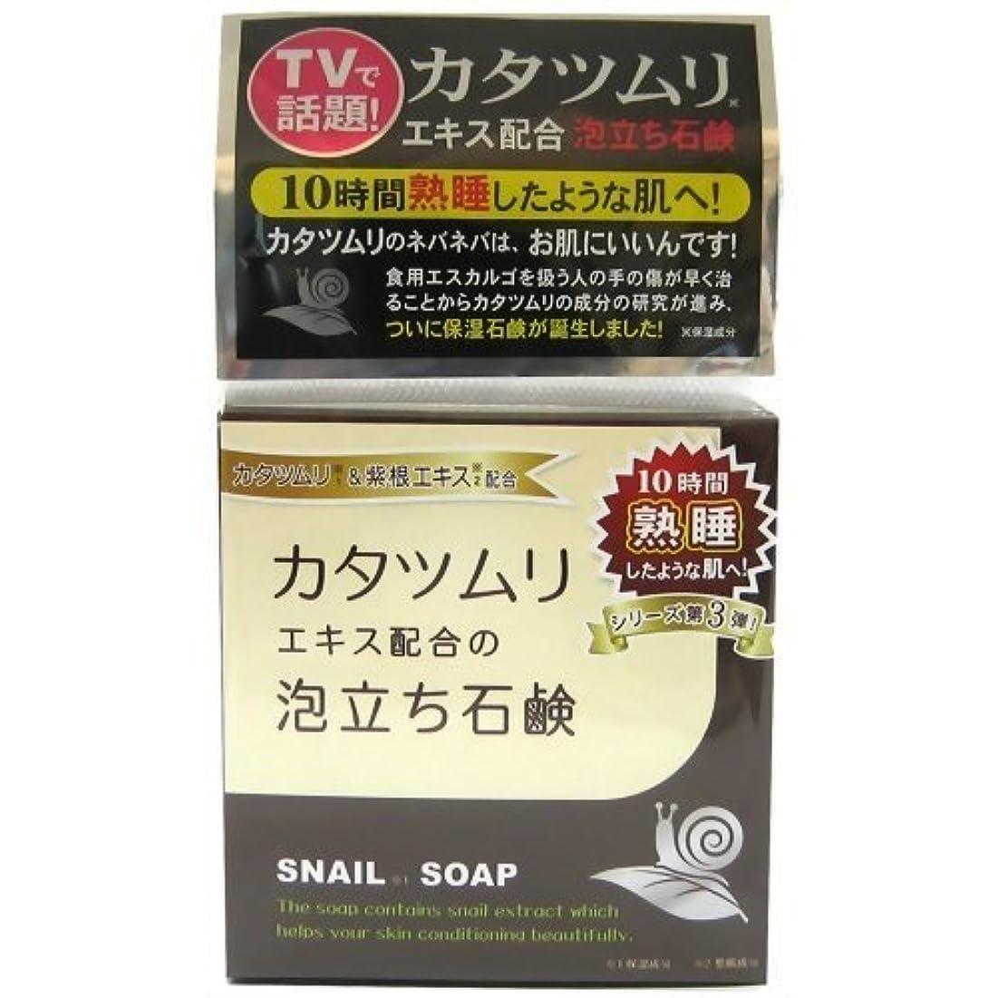 腹痛ハーフ費用カタツムリ石鹸 100g
