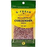 G-Fresh Coriander Seeds Refill, 20 g