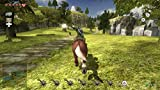 ゼルダの伝説 トワイライトプリンセス HD - Wii U 画像