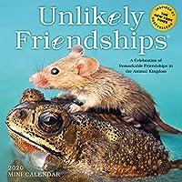 Unlikely Friendships 2020 Calendar