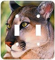 3drose LSP 88204_ 2カリフォルニアMountain Lion Wildlife Waystation us05bja0224Jaynesギャラリーダブル切り替えスイッチ