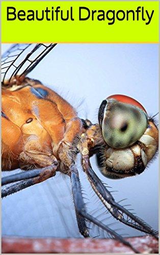 Beautiful Dragonfly: Photo boo...