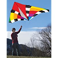 Into the Wind 9-ft。LevitationレインボーSingle Line Delta Kite