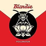 Blondie【POLLNATOR】