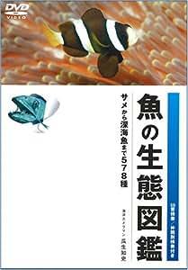 魚の生態図鑑 [DVD]