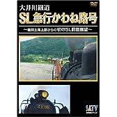 大井川鐵道SL急行かわね路号~機関士席上部からの初のSL前面展望~ [DVD]