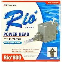 カミハタ Rio+800 (60Hz)