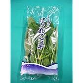 日常の一般野菜 ほうれん草 ホウレン草 1袋