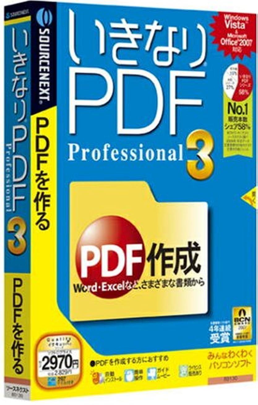 三角ギャップカバーいきなりPDF Professional 3 (説明扉付スリムパッケージ版)