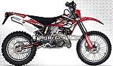 カスタム バイク グラフィックキットモータースポーツ ステッカー 適合GASGAS 2002 2003 2004 EC