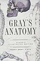 Gray's Anatomy: Classic Illustrated Edition (Fall River Classics)