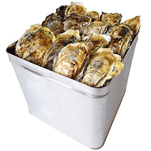 牡蠣 カンカン焼き セット S〜Mサイズ 100個入 冷凍 旬凍 桃こまち 鳥羽産 一斗缶入り (牡蠣ナイフ・片手用軍手付き) 殻付き牡蠣 海鮮バーベキュー セット