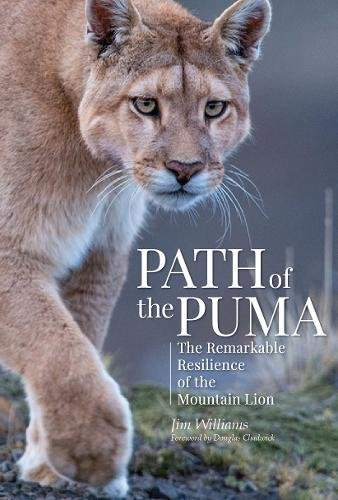 Path of the Puma: The Remarkab...