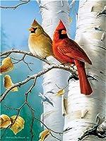 Diyの油絵子供のためのデジタル油絵大人初心者16x20インチ、ブランチの2つの小さな鳥--クリスマスの装飾ホームインテリアギフト (フレーム)
