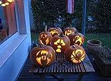 【 WT collection 】Halloween Carving kitハロウィン カービングキット かぼちゃランタン飾り 製作キット アメリカでベストセラーのキット [並行輸入品]