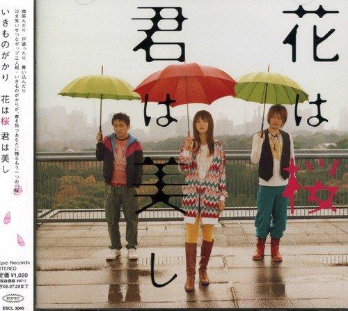 『花は桜 君は美し/いきものがかり』には歌詞が2つあるって本当!?噂の真相を徹底解剖!!の画像