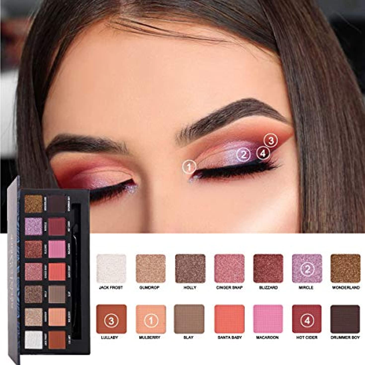 借りる航空会社健康的Eye Shadow14色のアイシャドーマット多色セットアイメーク舞台 (スタイルB)
