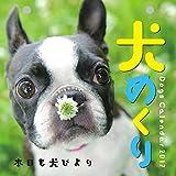犬めくり 2017年 カレンダー 日めくり CK-D17-01