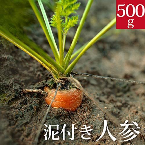 泥付き人参500g 国産 無農薬【ゲルソン療法】にんじん ニンジン